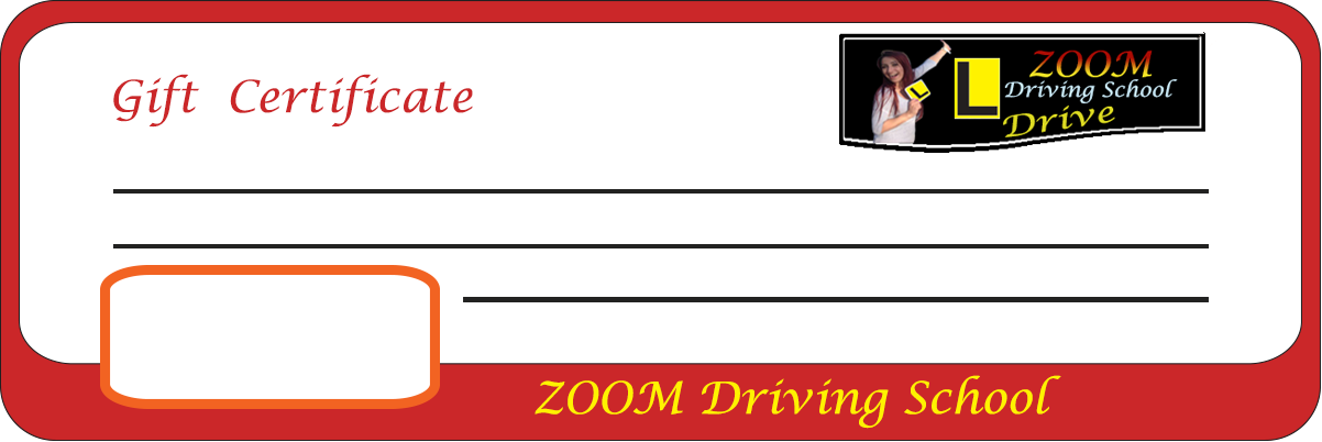 Zoom Driving School special Package deal